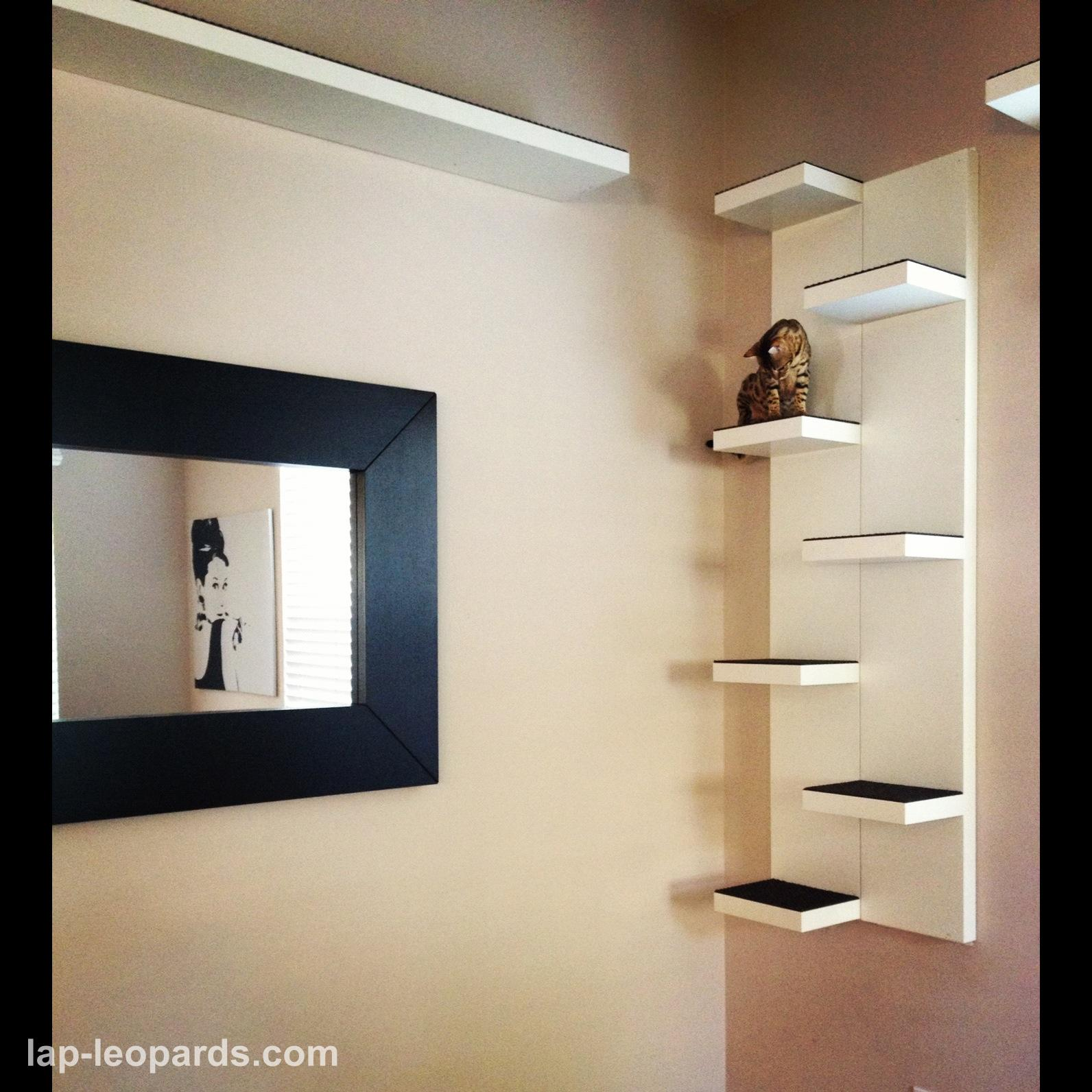 1000 images about cat friendly spaces on pinterest cat - Wall mounted cat furniture ...