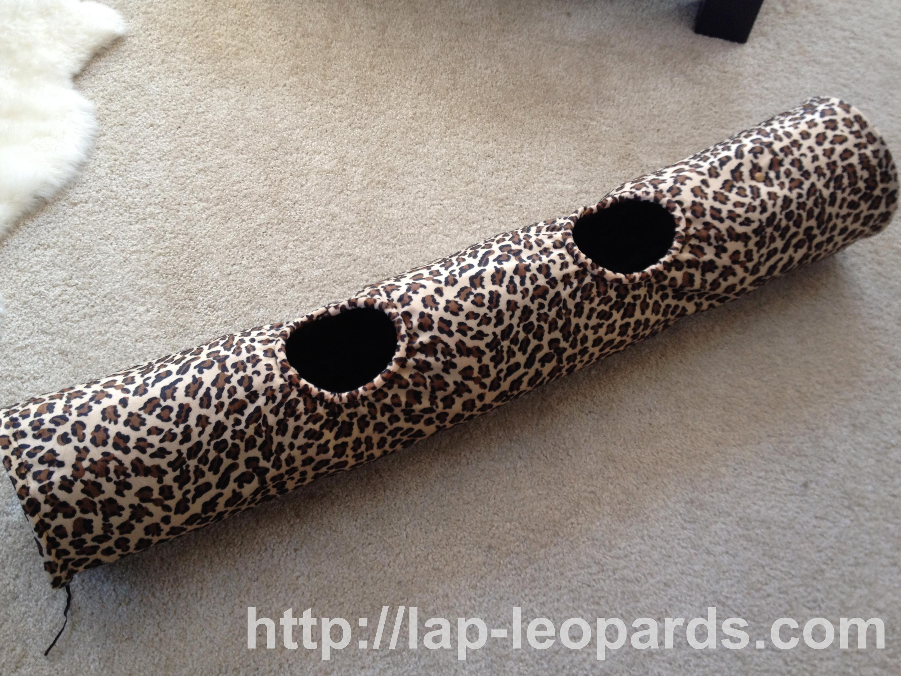 Kitten toys « Lap Leopards; The Bengal Cat.